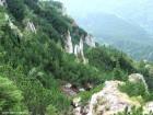 Acul din Valea Urzicii