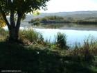 Lacul Lebedelor - Faragau