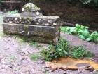 Apa minerala Buzgo - Valea paraului Bradul Mare