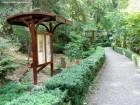 gradina botanica Targu Mures