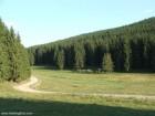 Dealul Cetatii Soimeni
