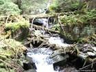 Cascada Lomasita