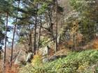 Belvedere Piatra Soimului - Oituz