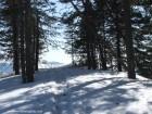 Piatra Mica a Bufnitei - Harghita-Bai