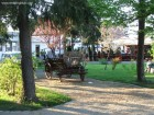 Parcul Jozsias - Targu Secuiesc