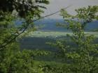 Dealurile biciclistilor Cocorastii Mislii