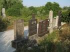 Memorialul Ginta