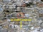 Turnul medieval Ruieni
