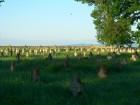 Cimitirul german de la Tisita