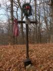 Crucea dr. Iacomi - Muntele Cernegura