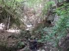 Cascada Bahrin